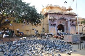 Travel Photography Blogger